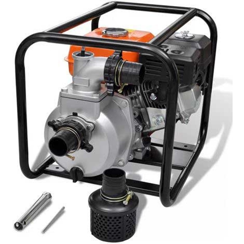 What factors determine the price of an agricultural pump motor